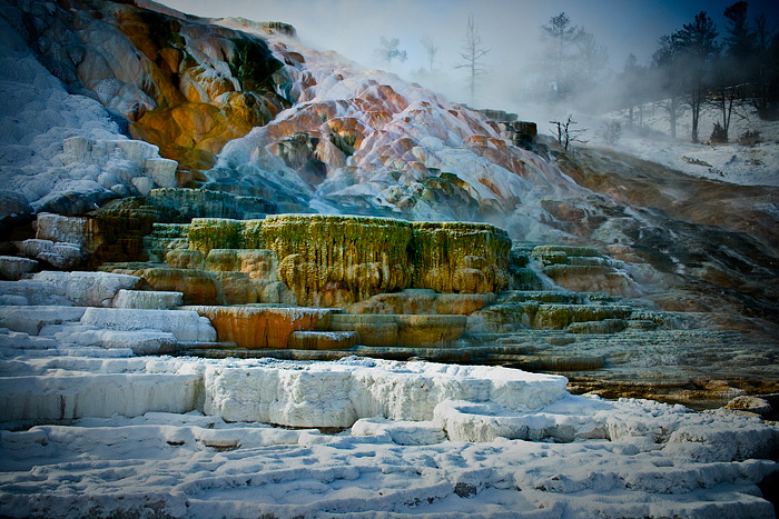 lower-terraces-mammoth-hotsprings-yellowstone